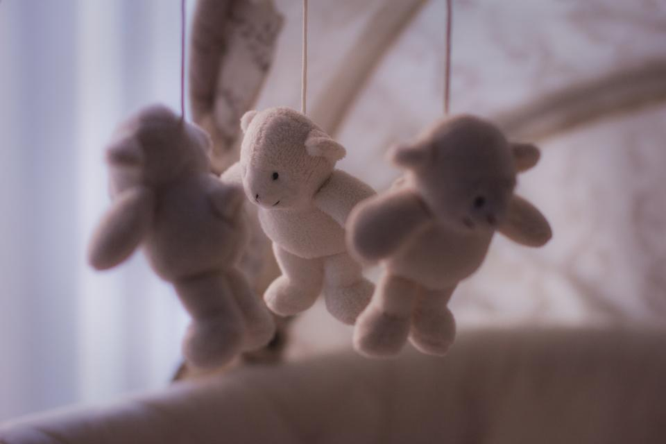 baby bears, bears for parenting