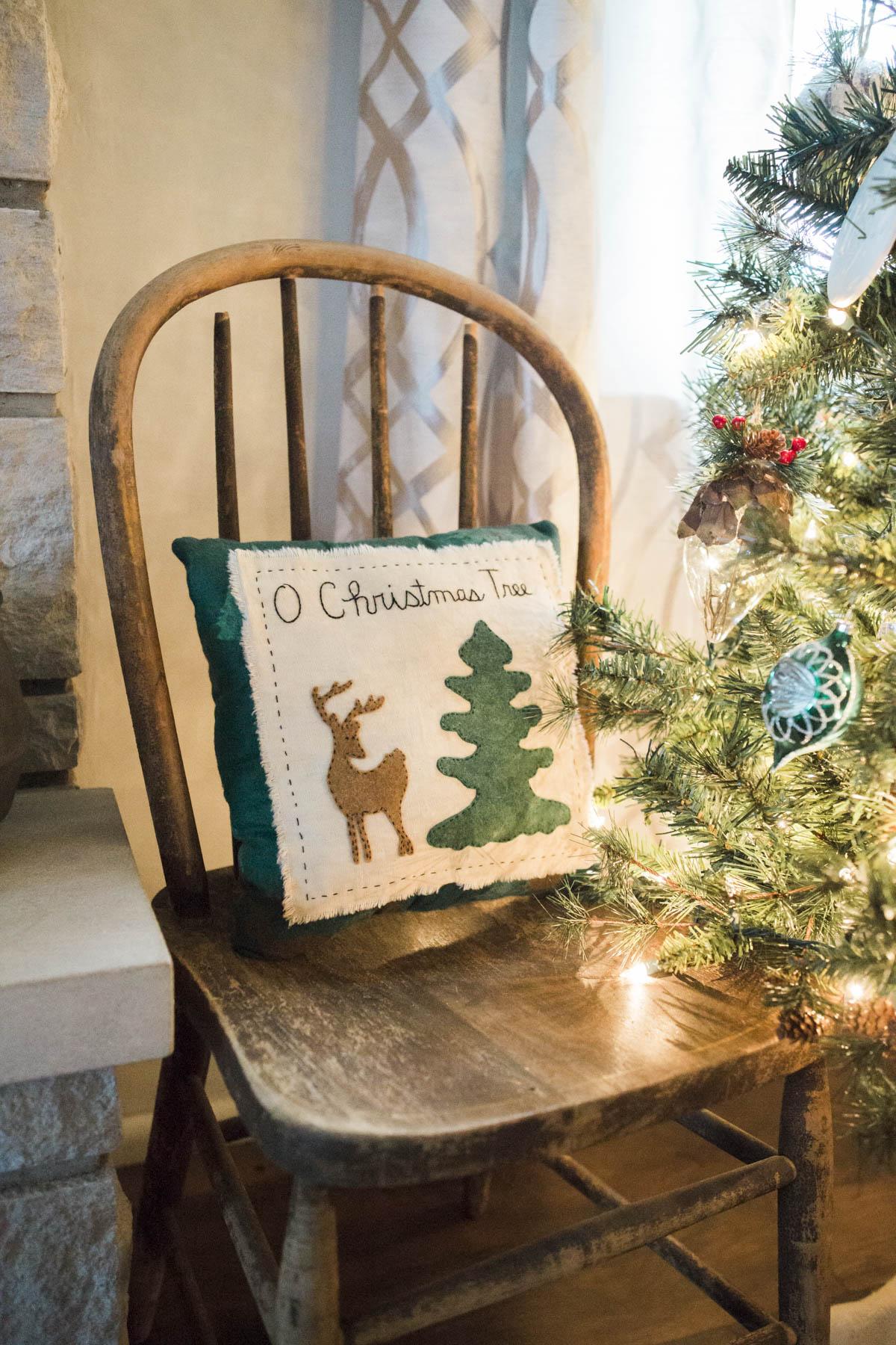 shotbychelsea_christmas_farmhouse_decor-4.jpg