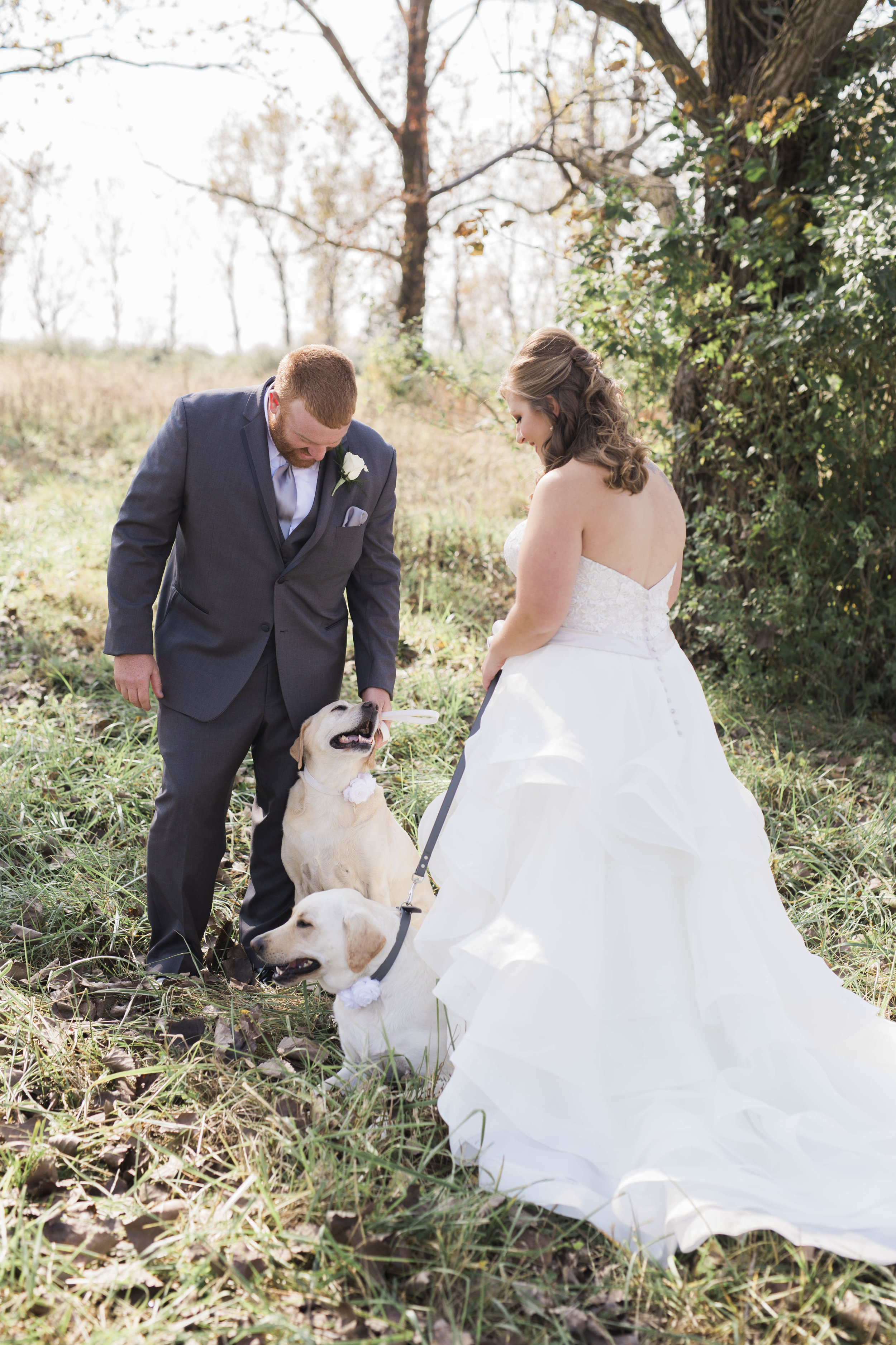 blog_dog_in_wedding-3.jpg