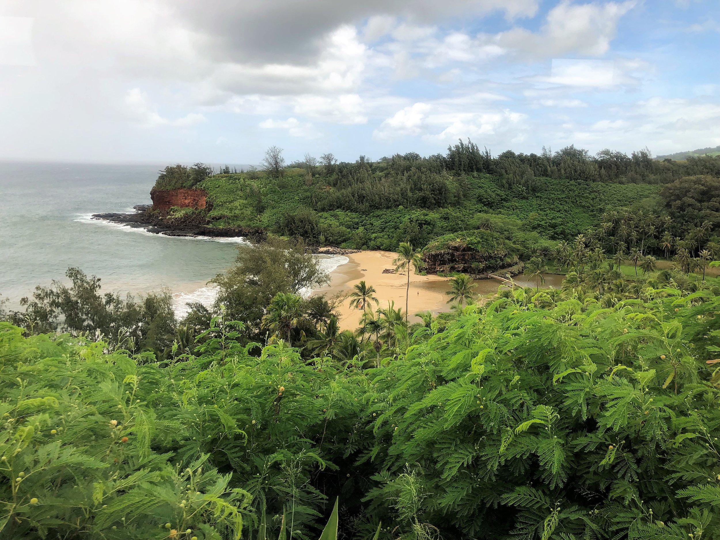 Lawa'i Valley, where McBryde Botanical Garden resides