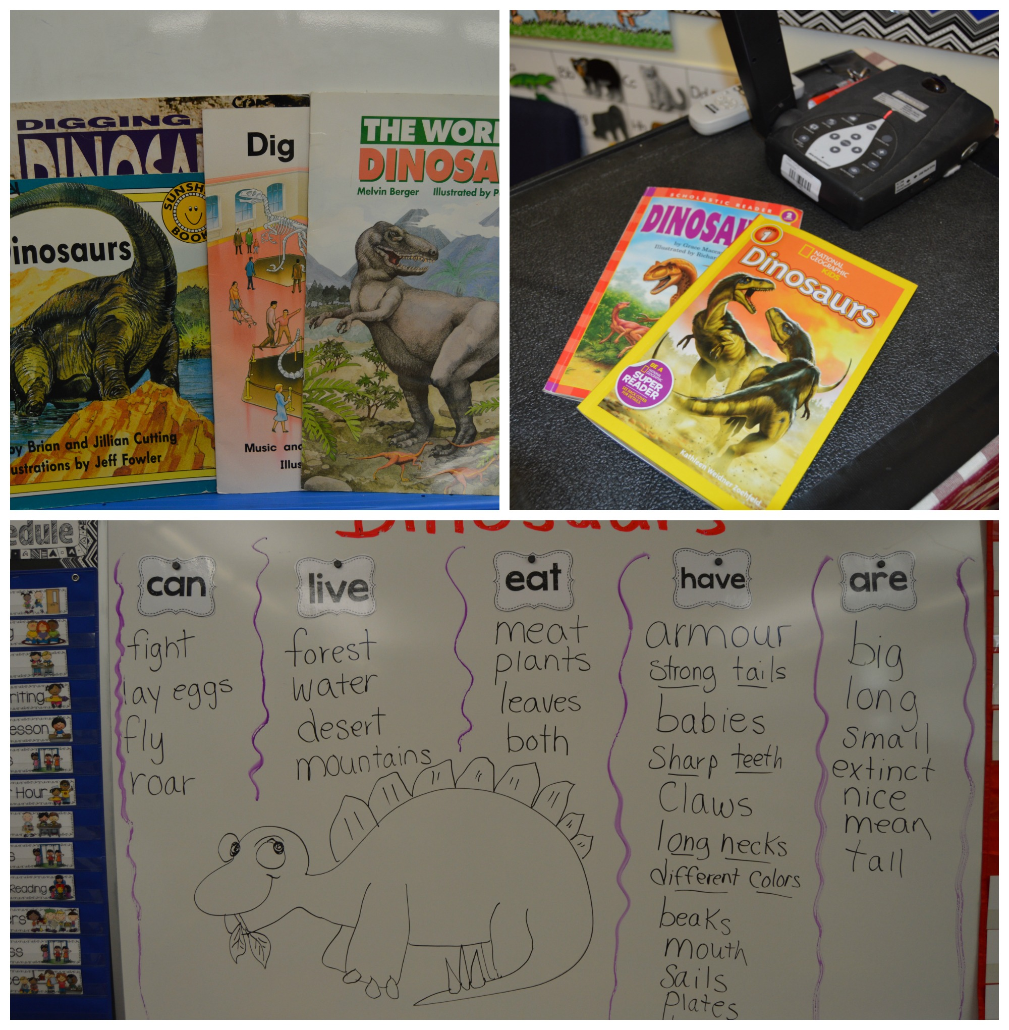 Close reading is a great activity that allows students to gather facts through text. Look at all of the things we learned from books.