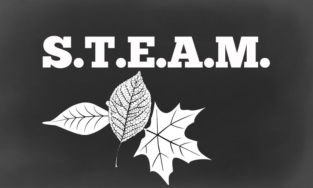S.T.E.A.M.