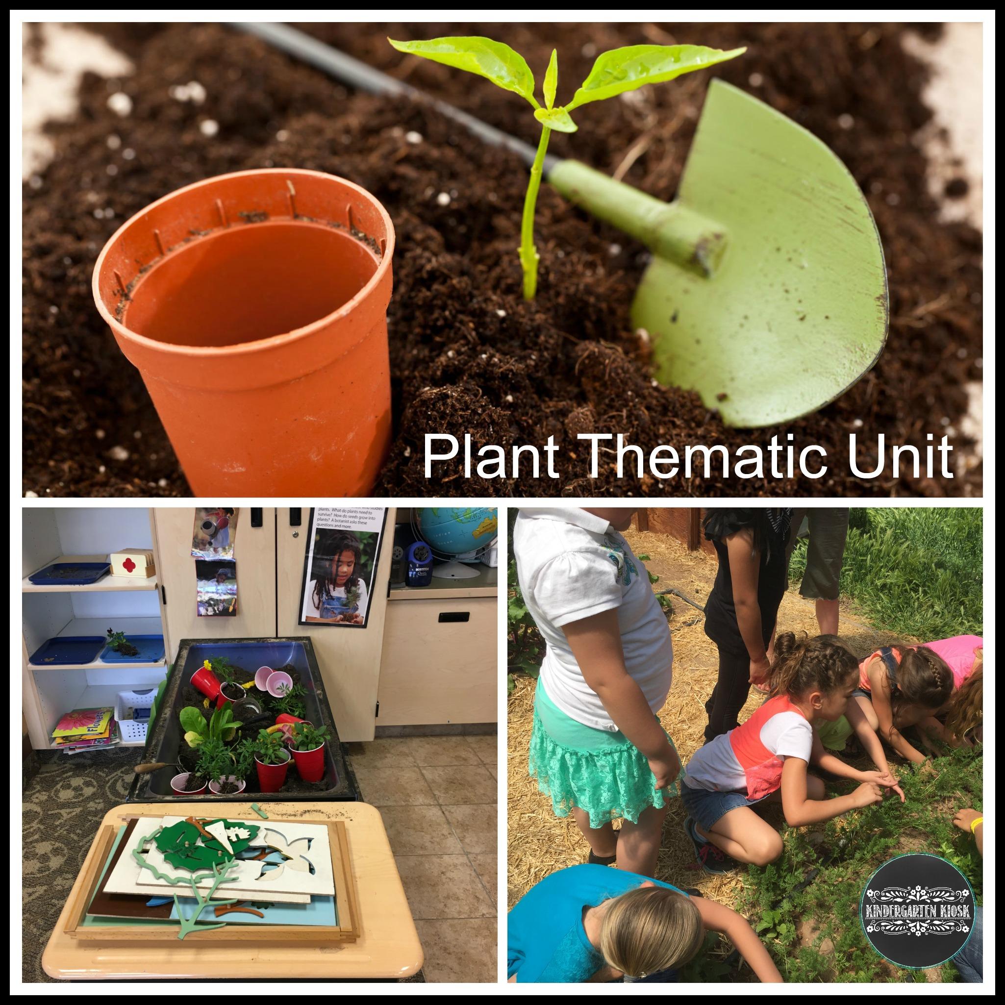 plant-thematic-unit.jpg