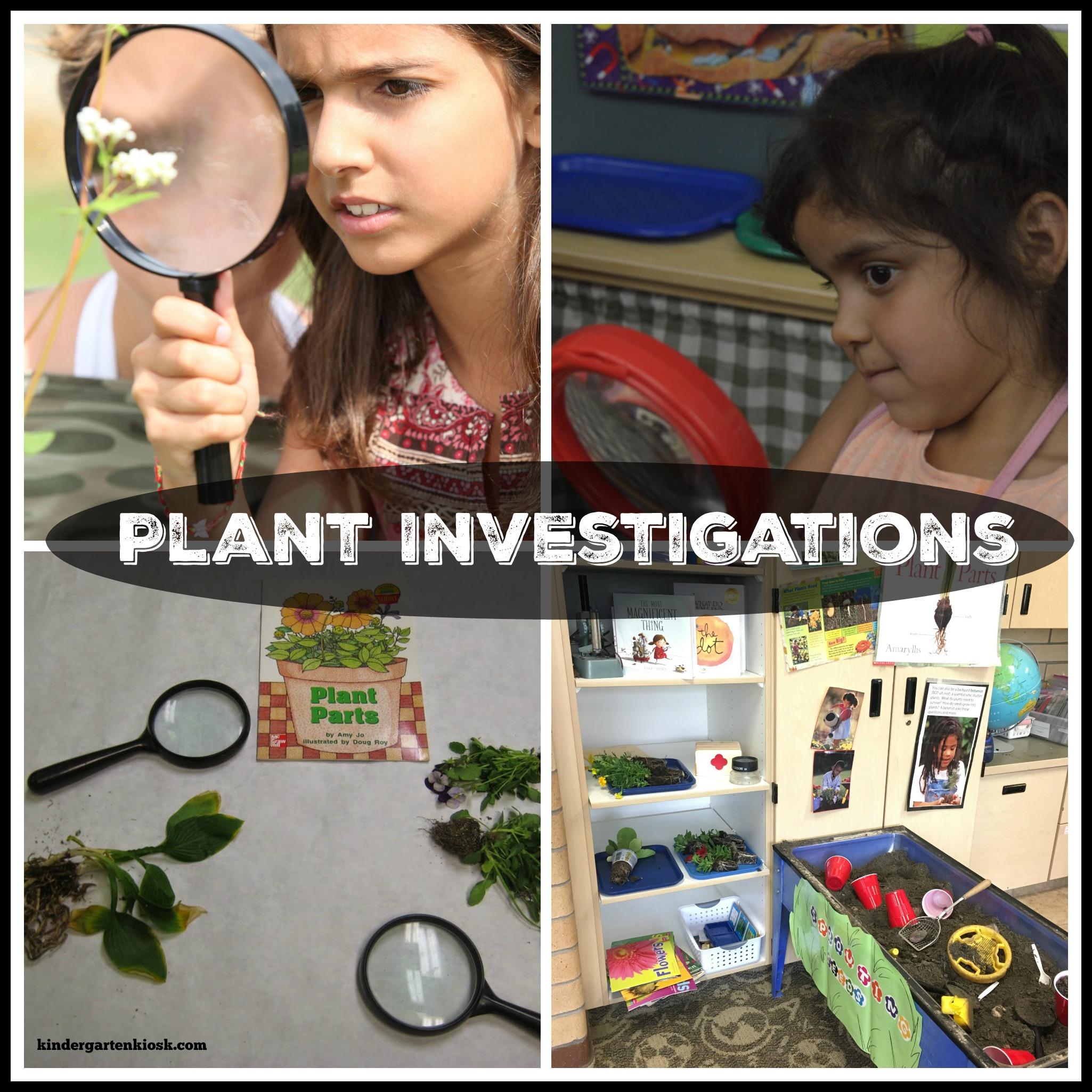 plant-investigation-science.jpg