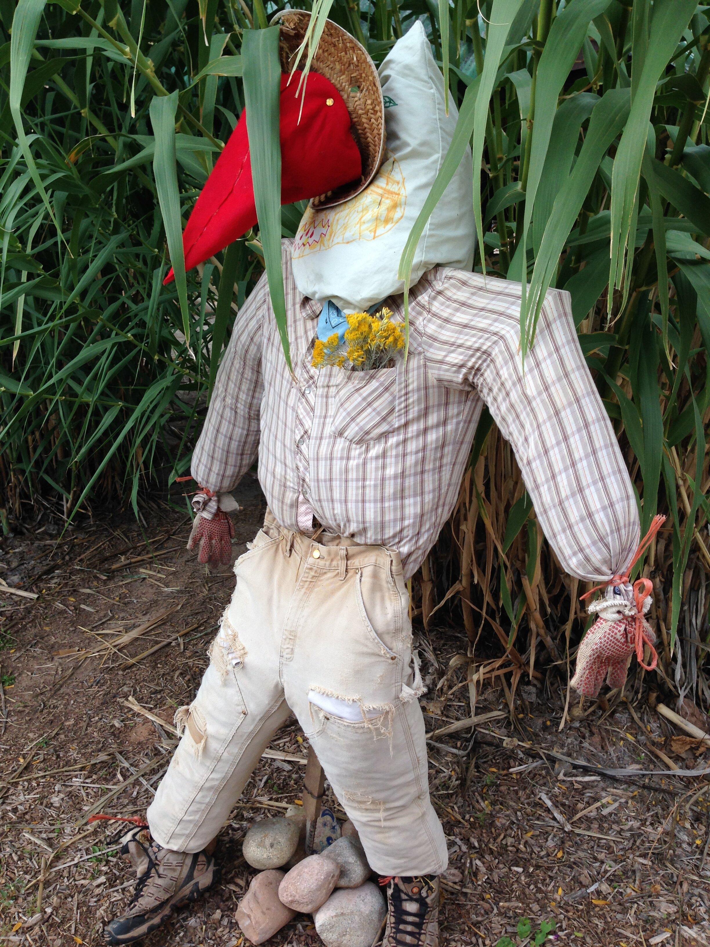 scarecrow-kindergarten.jpg