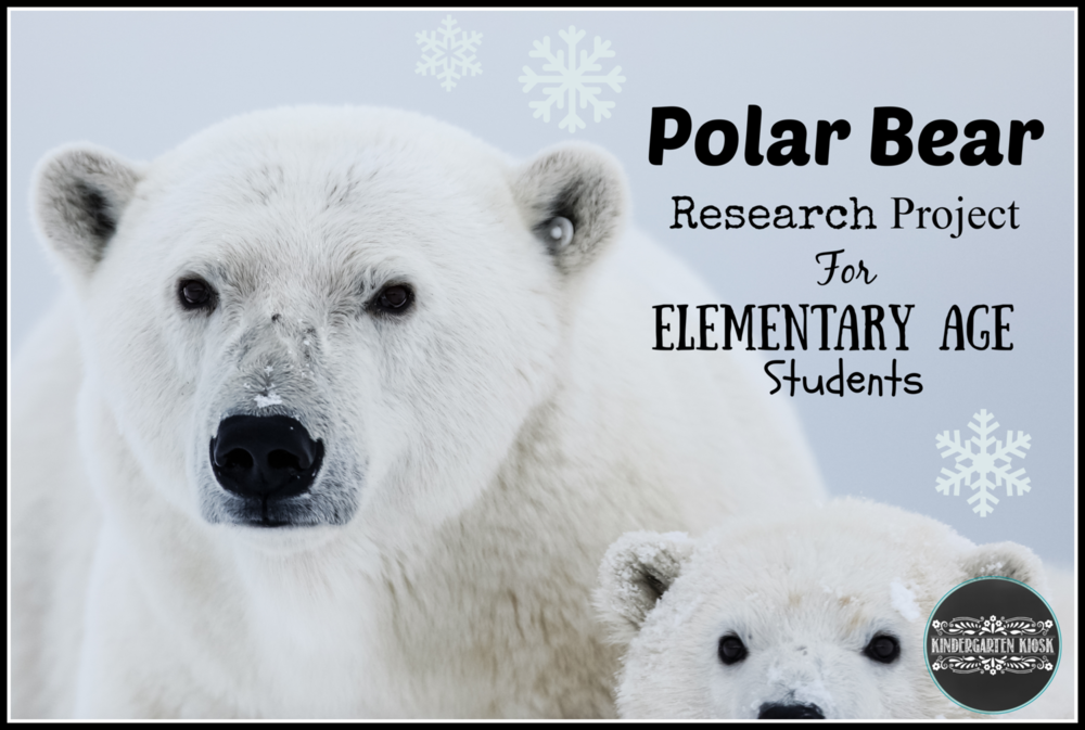 Polar+Bear+Research+Project.png