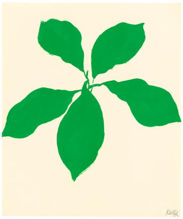 Ellsworth Kelly - Avocado