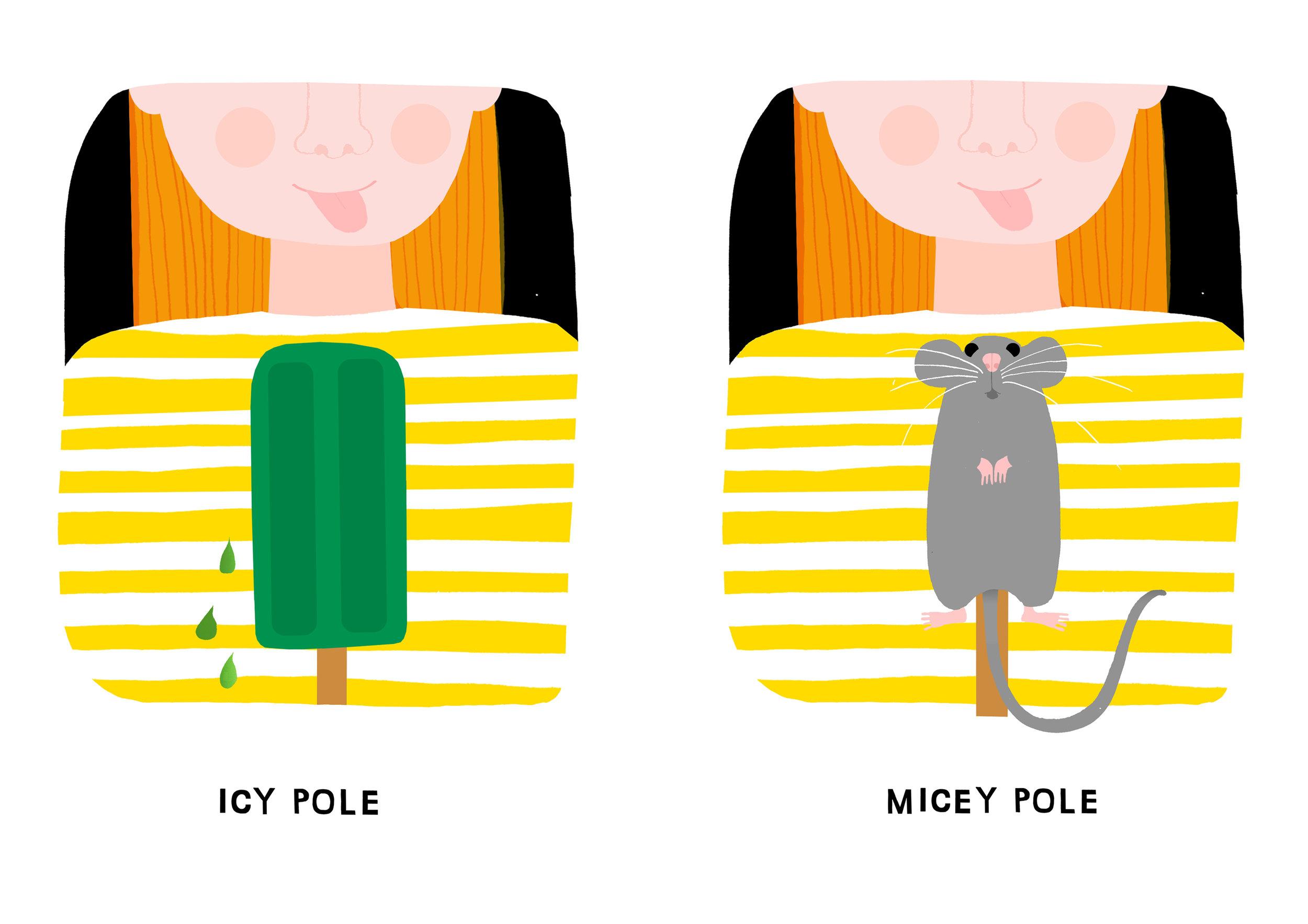 micey pole.jpg