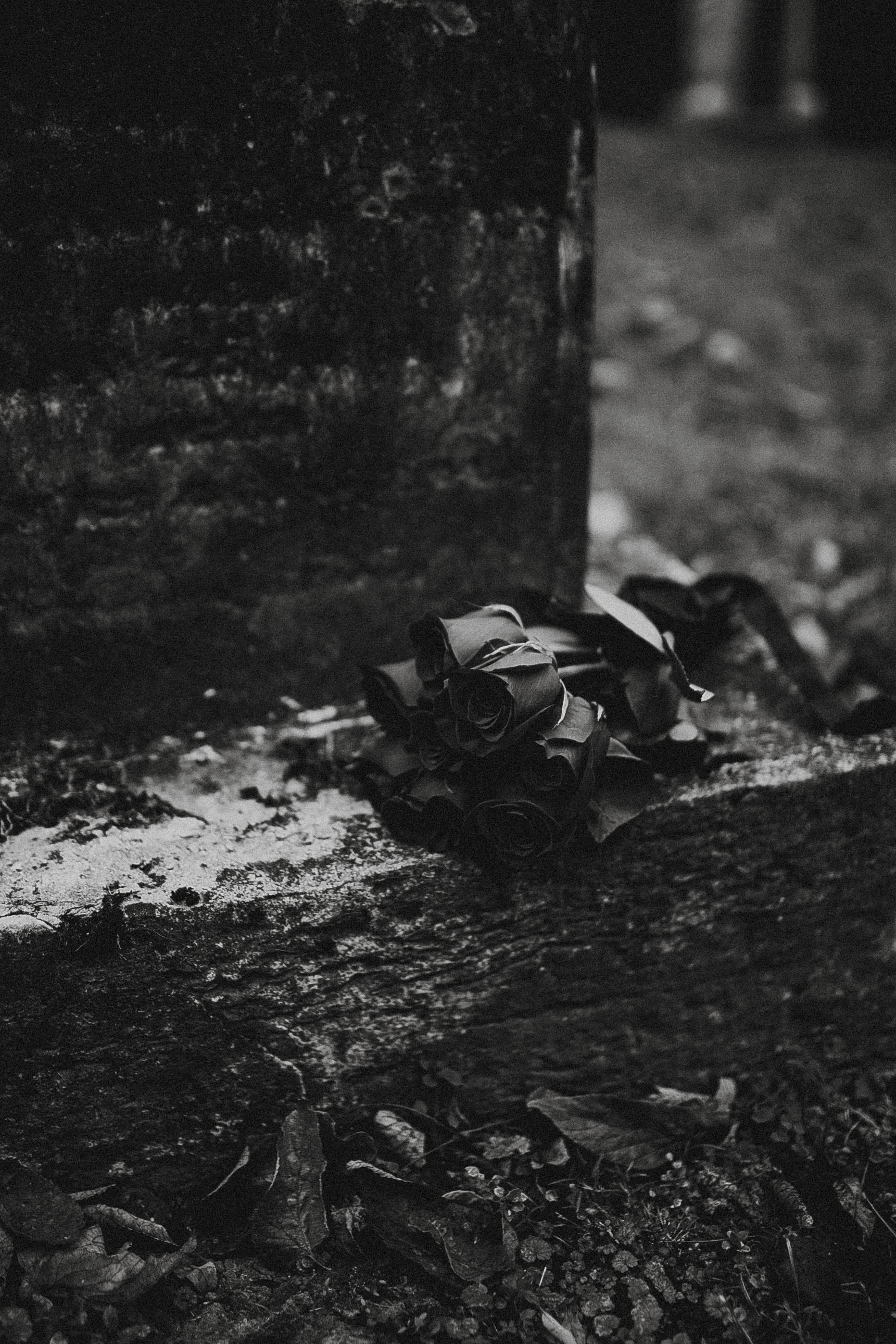 HALLOWEEN-REAGANLYNNPHOTOGRAPHY-INDIANAPOLIS-INDIANA-38.jpg