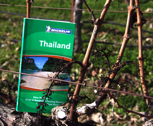 thailand-guide-book-hot-winter-trend-green