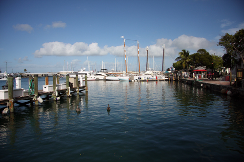 marina-boats-fall-in-love-with-key-west