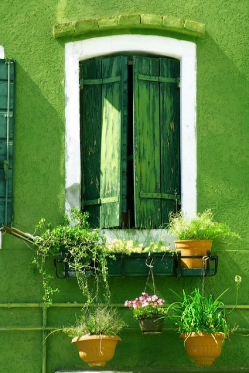 green-winter-hot-winter-trend-green