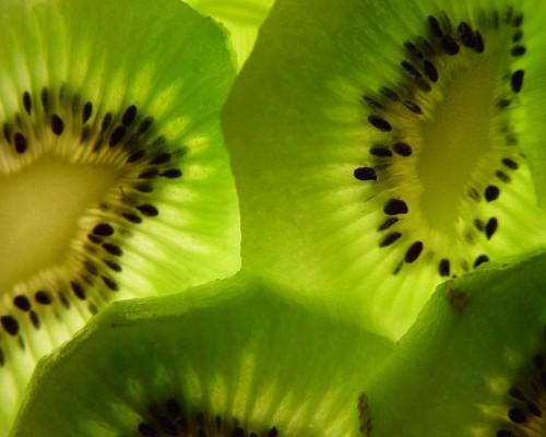 kiwi-hot-winter-trend-green