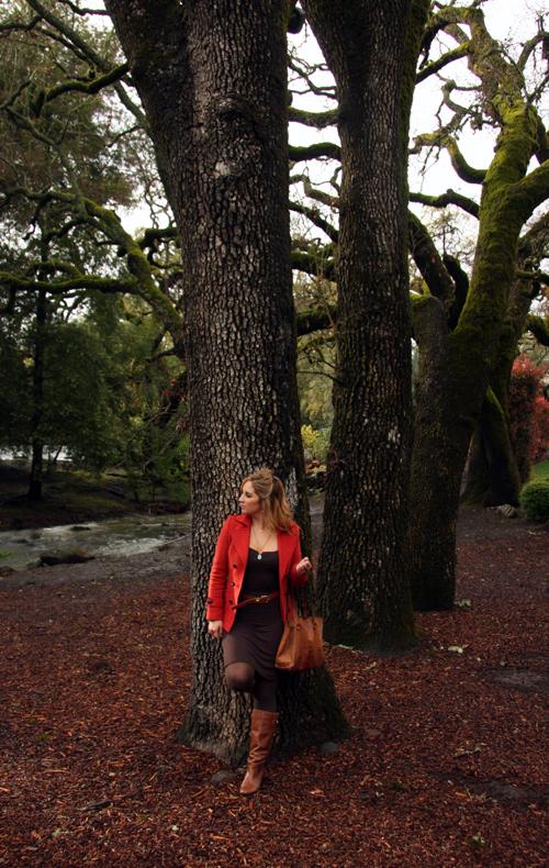 tree-farm-an-afternoon-at-domain-chandon
