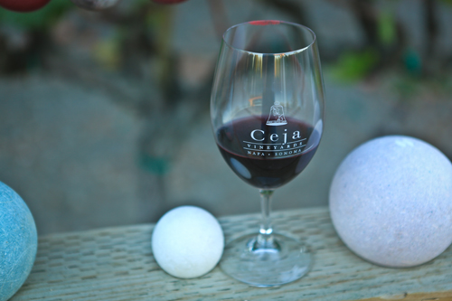 Rock-and-Vine-Book-Launch-wine-glass