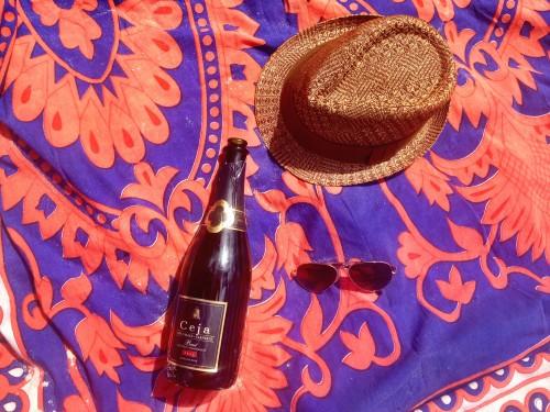 ceja-vineyards-wine-club-cruise-Caribbean-afternoon