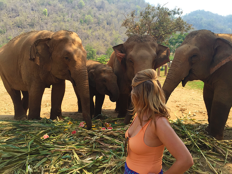 Exploring the Elephant Nature Park with these beauties