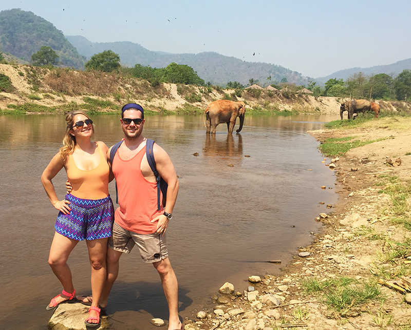 Rescue elephants bathing at the Elephant Nature Park