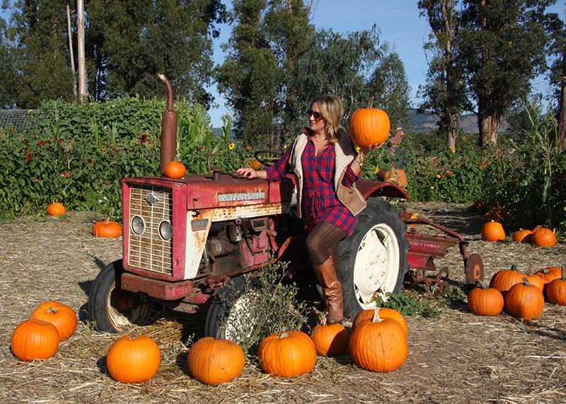 tractor-pumpkin-patch-hello-october