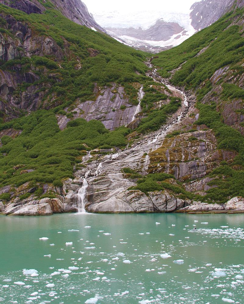 glacier-bay-ceja-wine-cruise-alaska