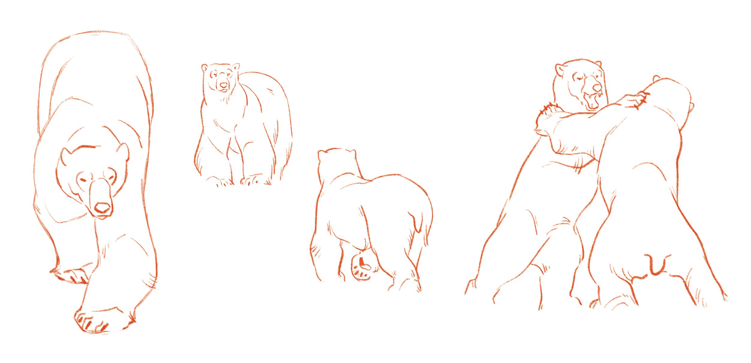 Poses of the Polar Bears  - Linework