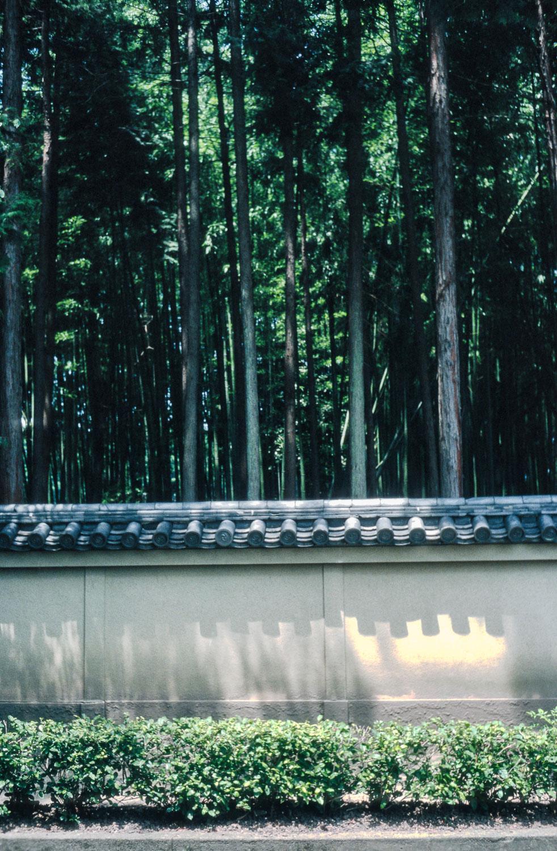 20160310 Jpegs for Website Japan 2-48.jpg