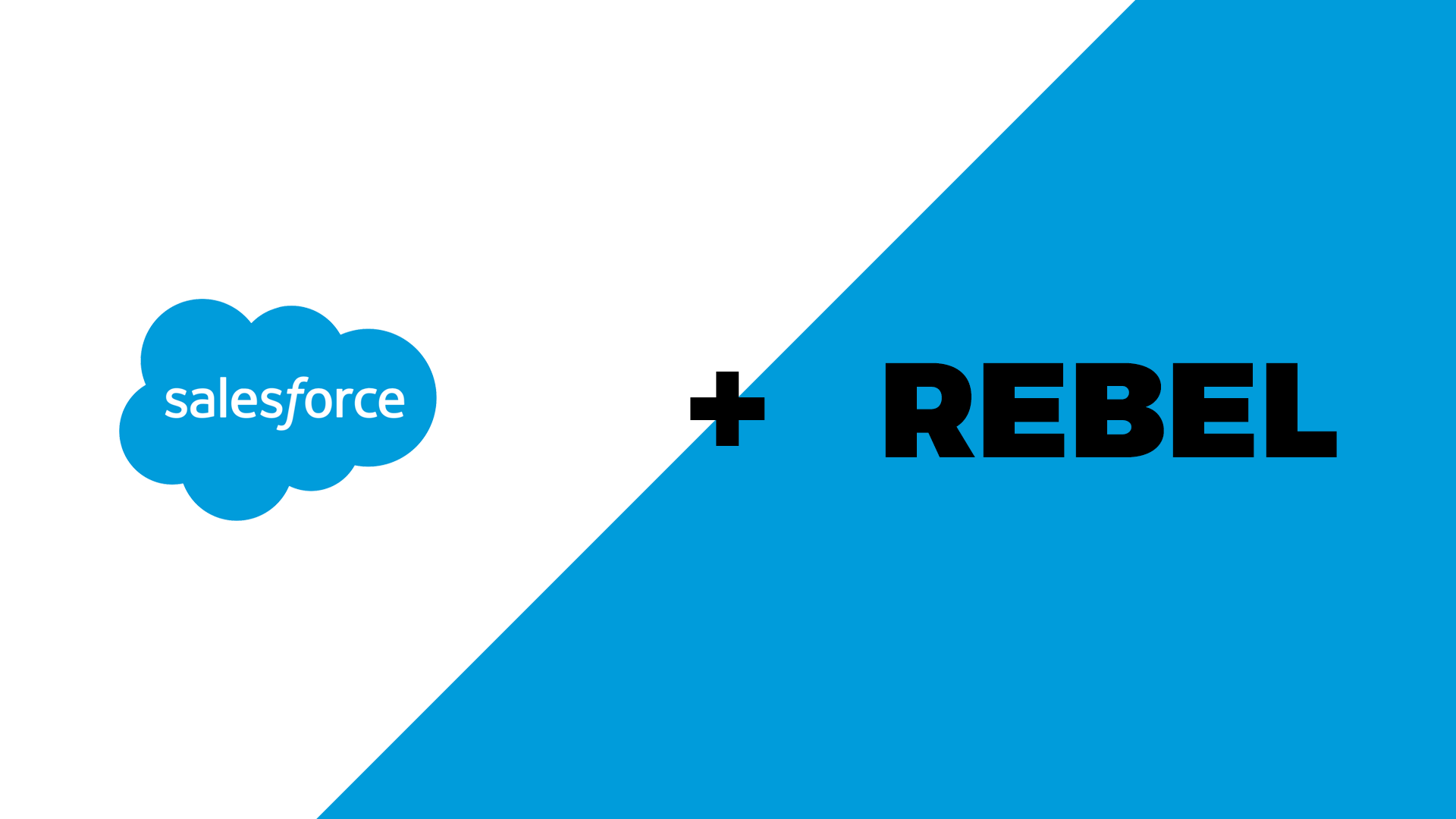 salesforce rebel.png