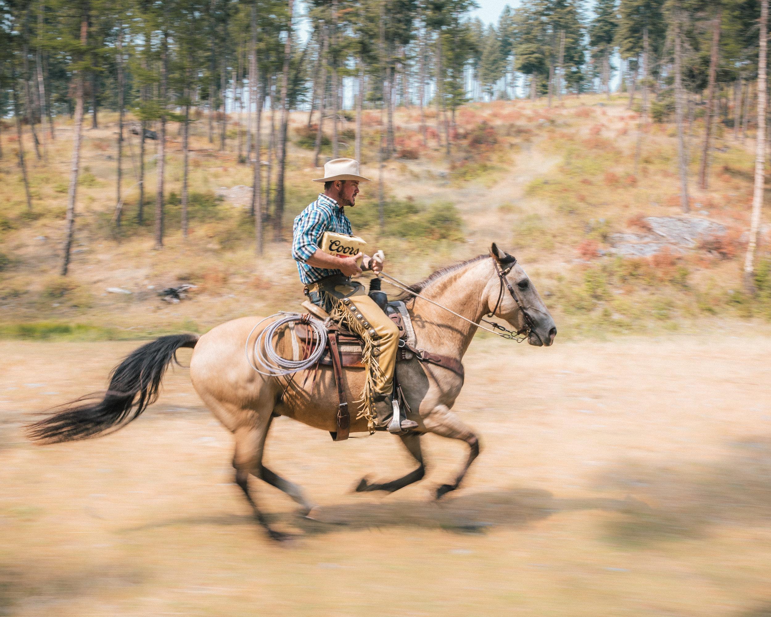 horse_banq_06.jpg