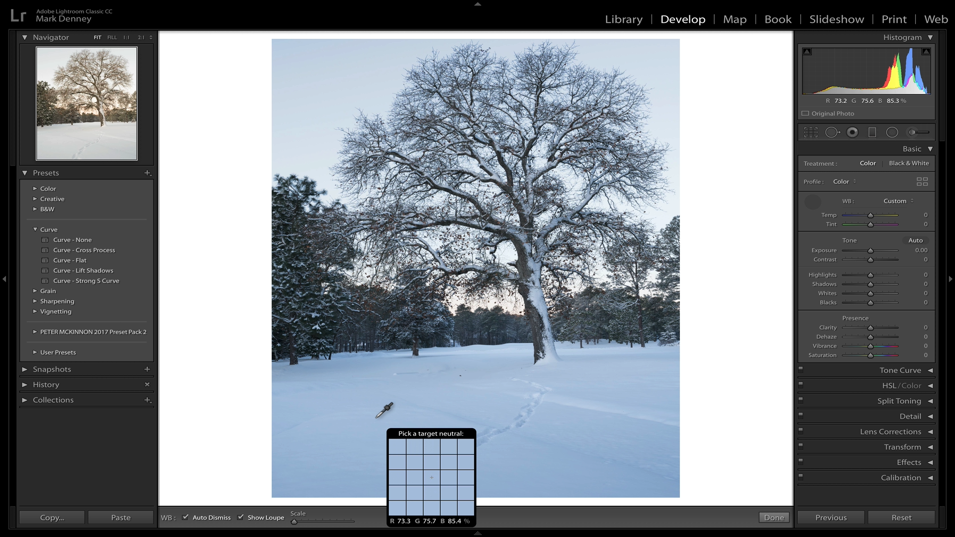 Lightroom Tips to Transform Your Winter Photos 02