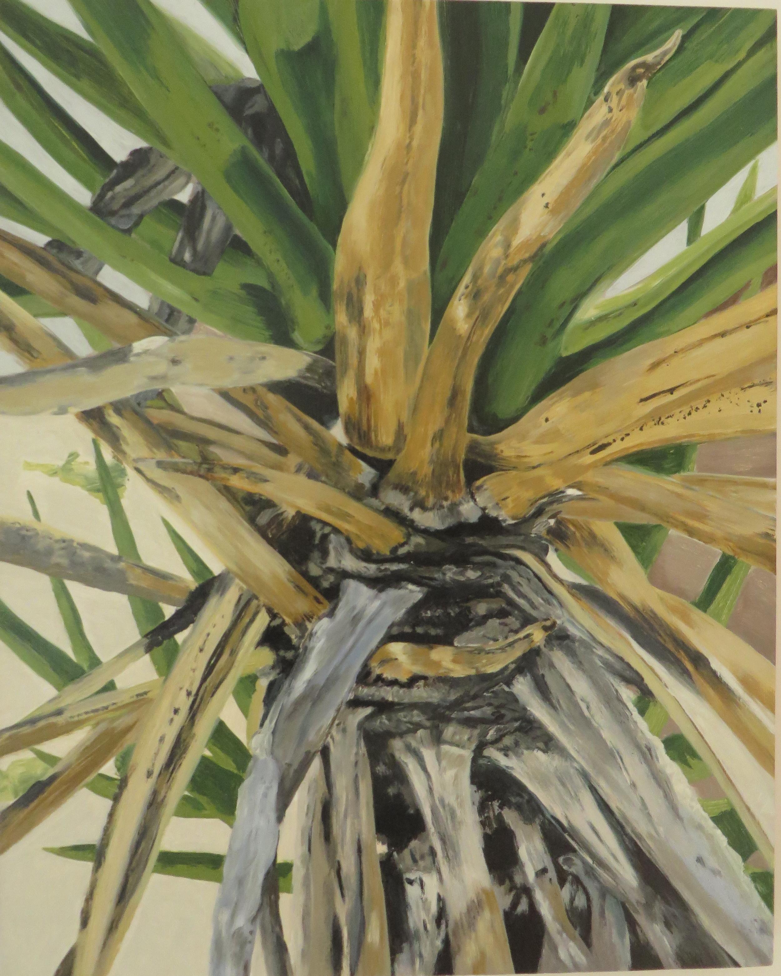 Joshua Tree Series, No.4