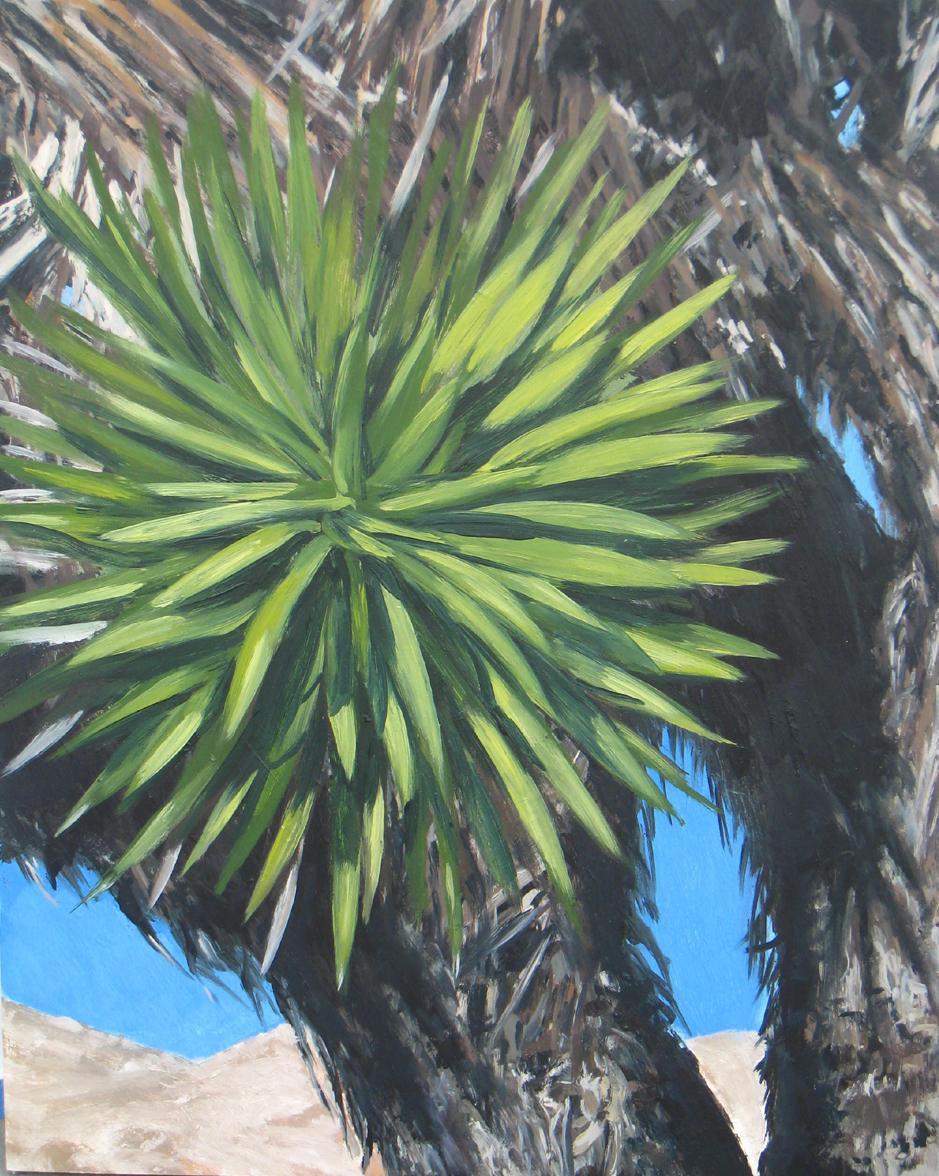 Joshua Tree 3, 2008
