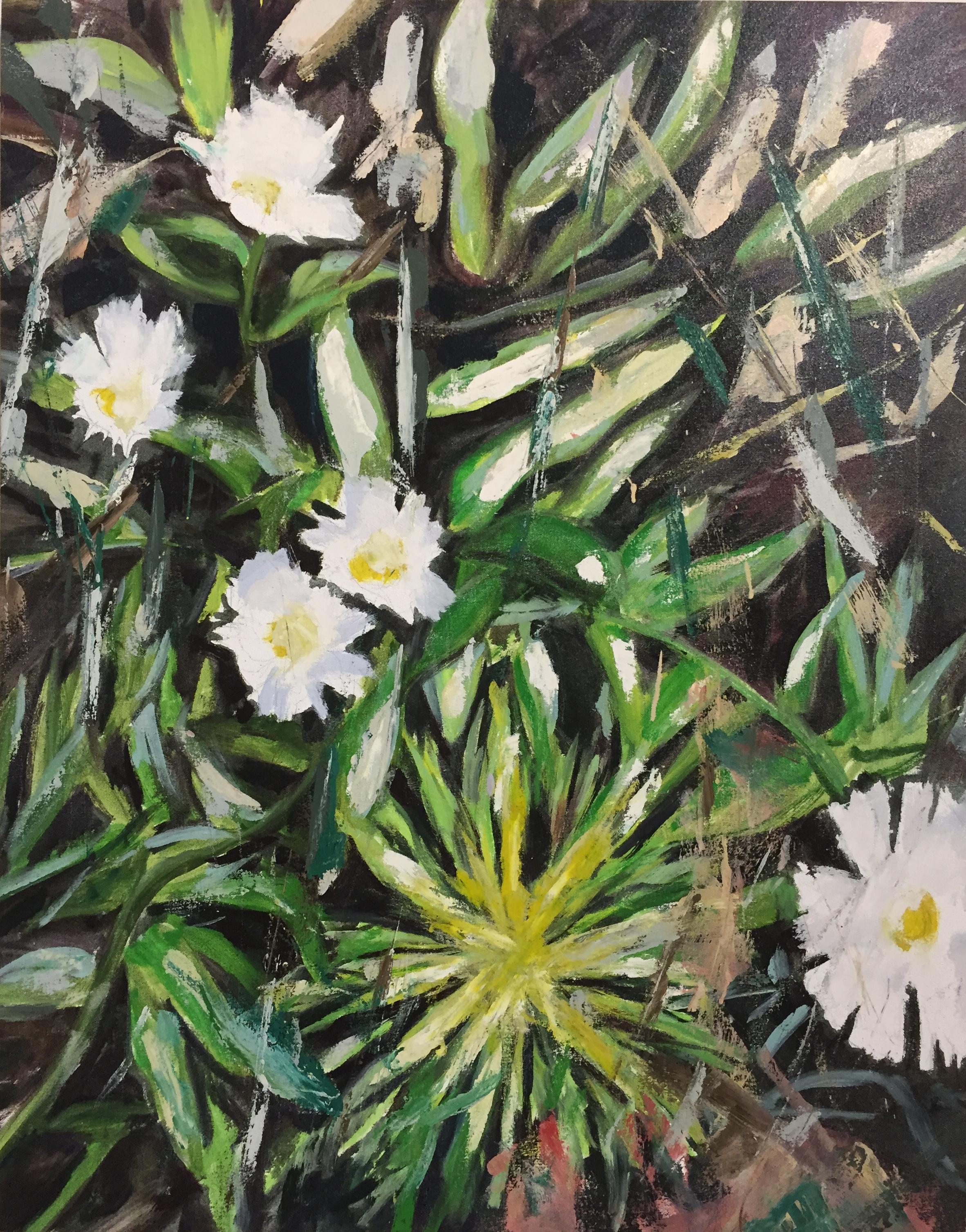 Wild Flowers, 2009