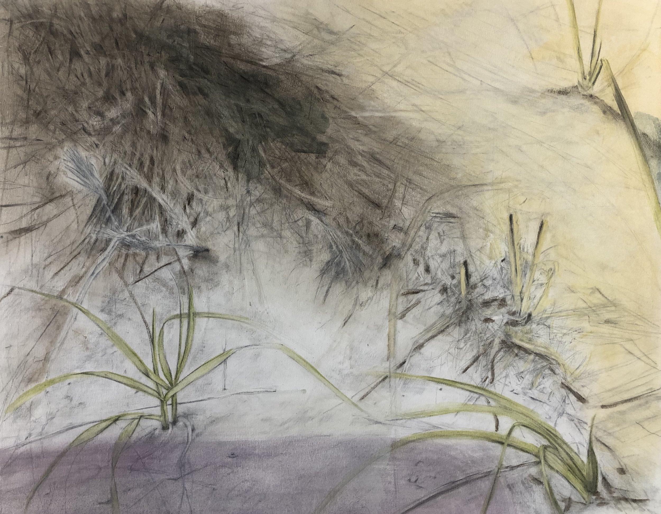 Dunes Rendering, Painting, 2015
