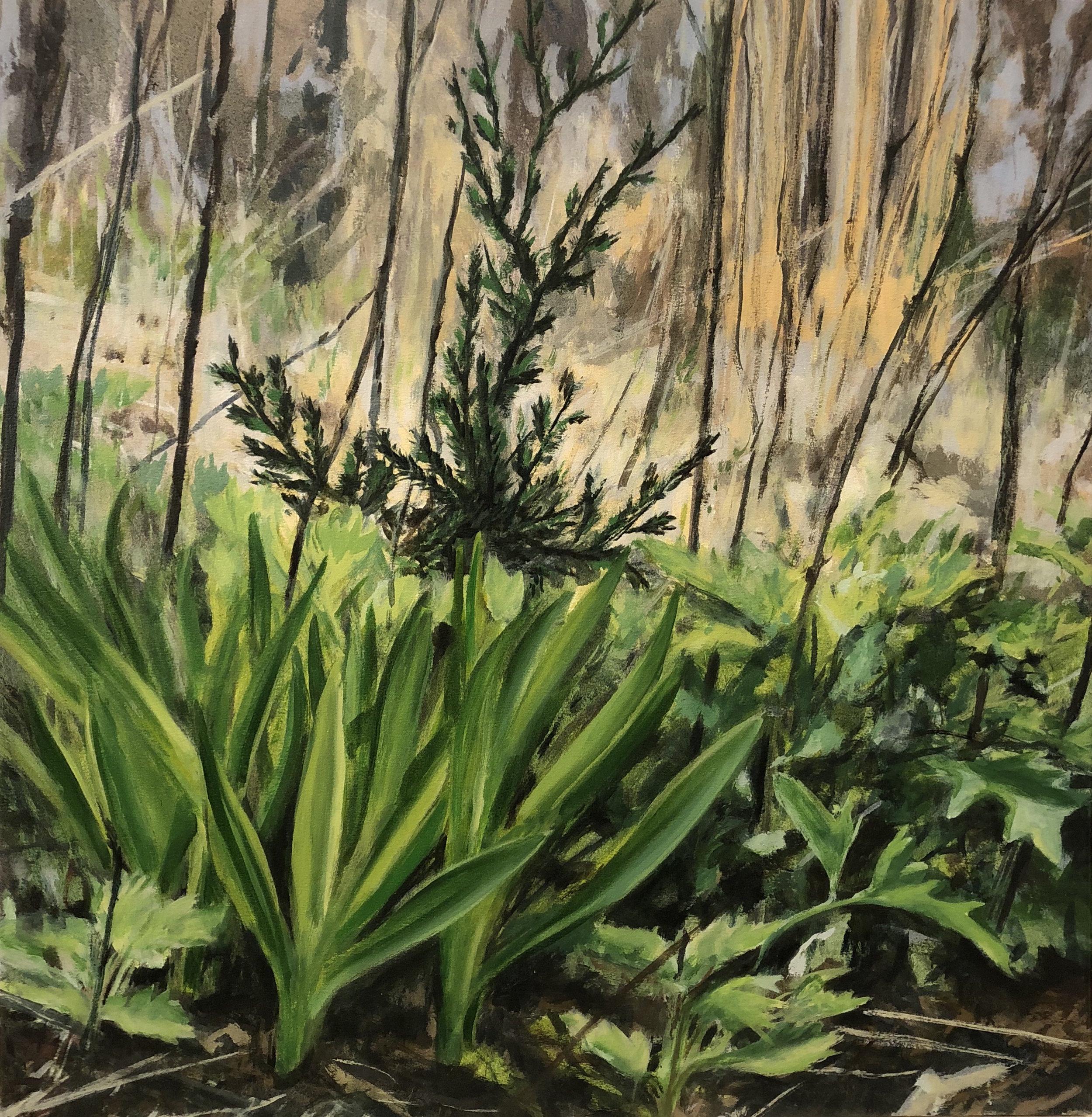 Local Flora, 2008