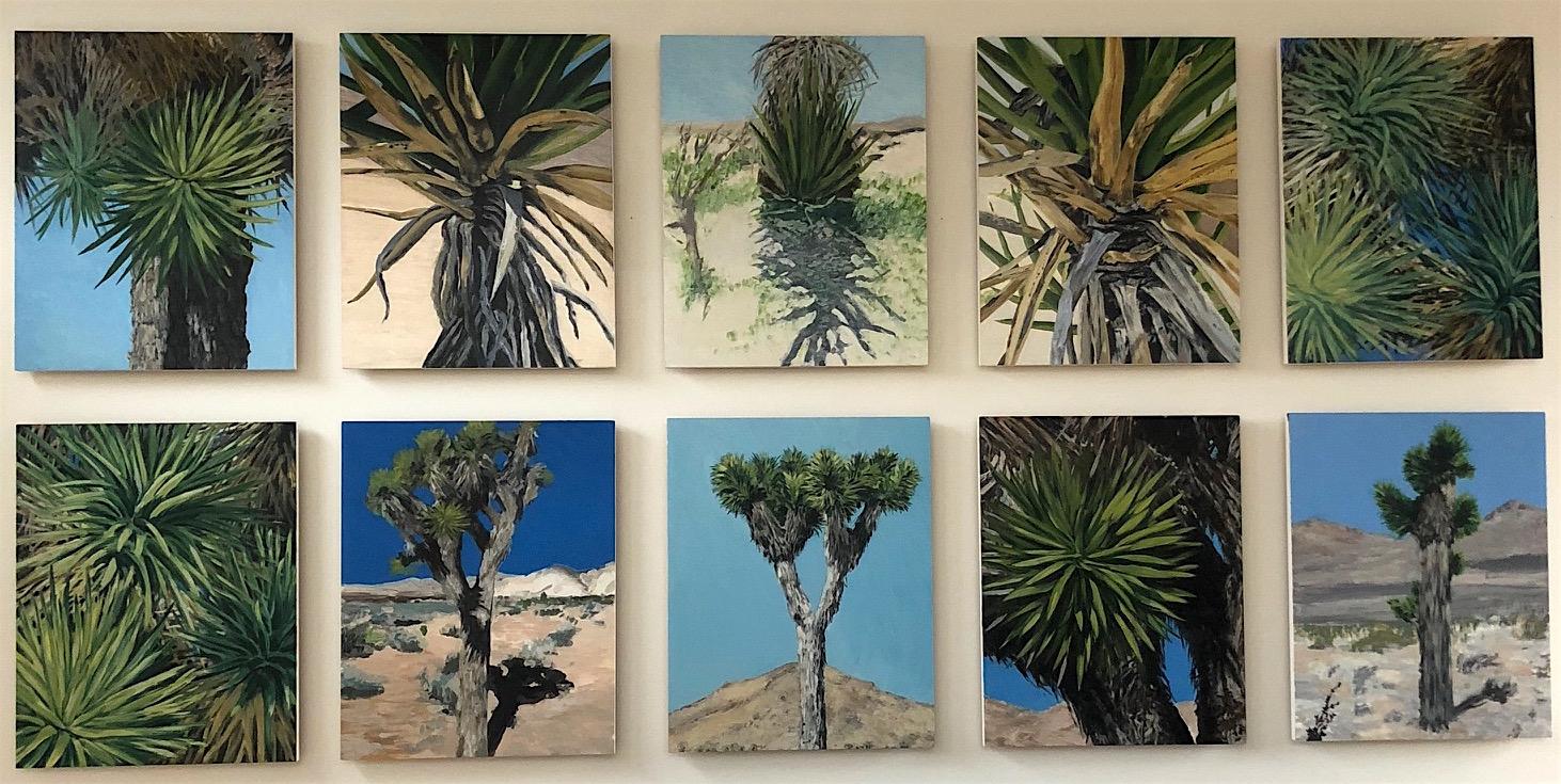 Joshua Tree, 2008