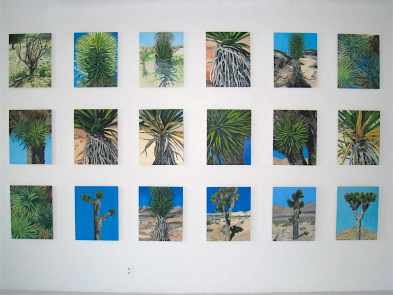 Joshua Tree, Group of 18, 2008