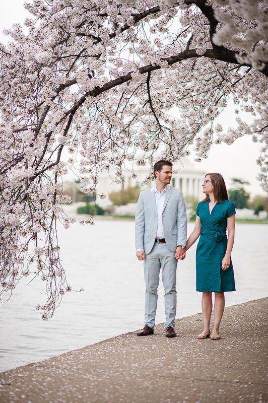 cherry_blossom-7.jpg