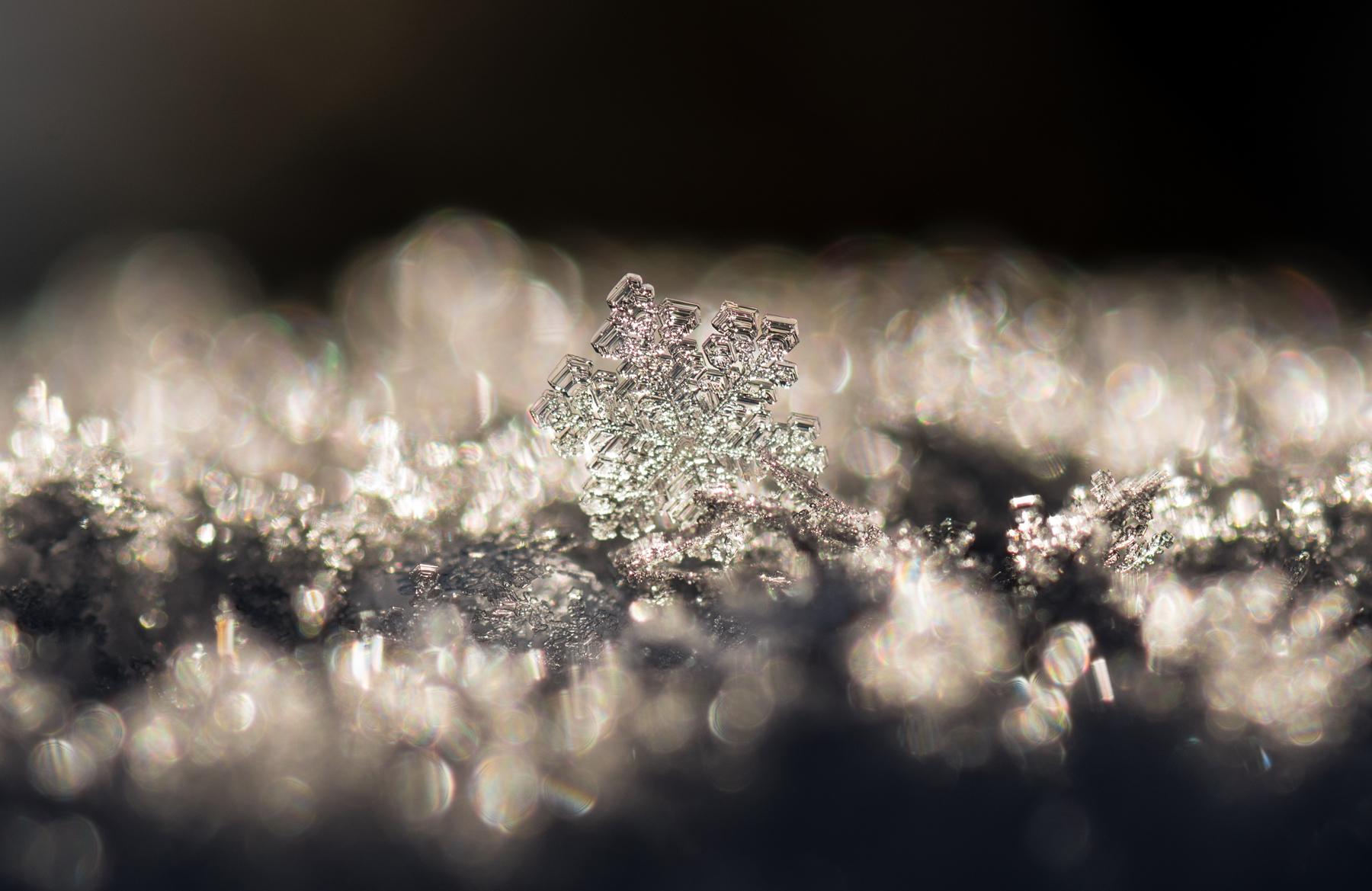 Snowflake III