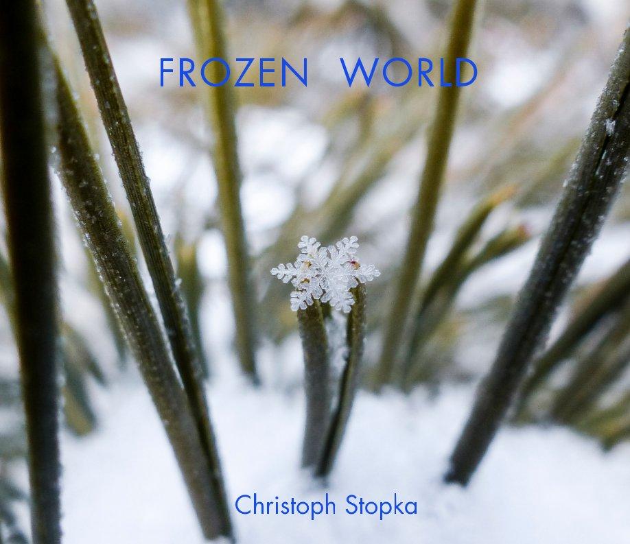 frozen_book_cover.jpeg