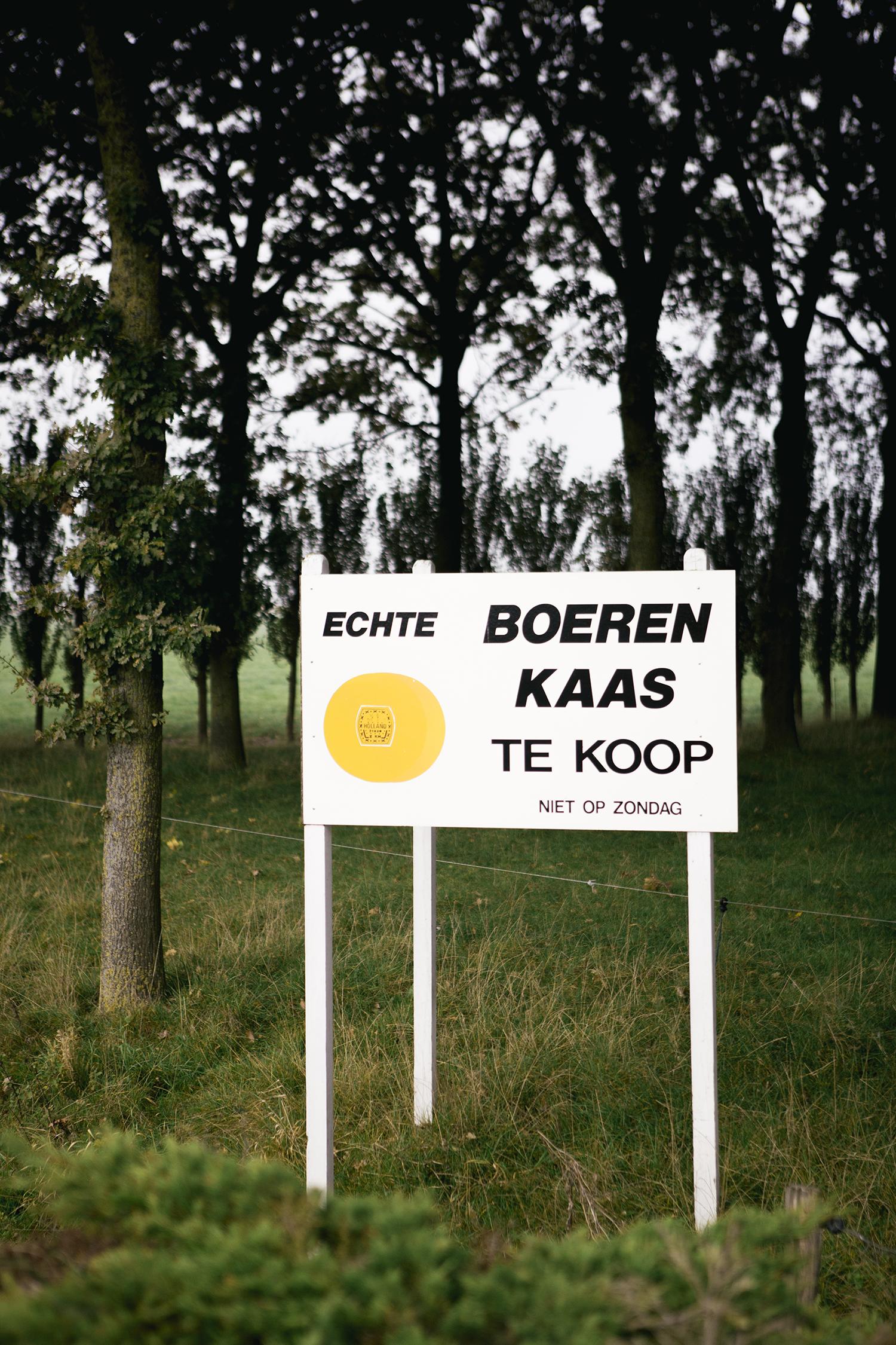DesirévandenBerg_Kaasboek_Verwey__87A5980.jpg