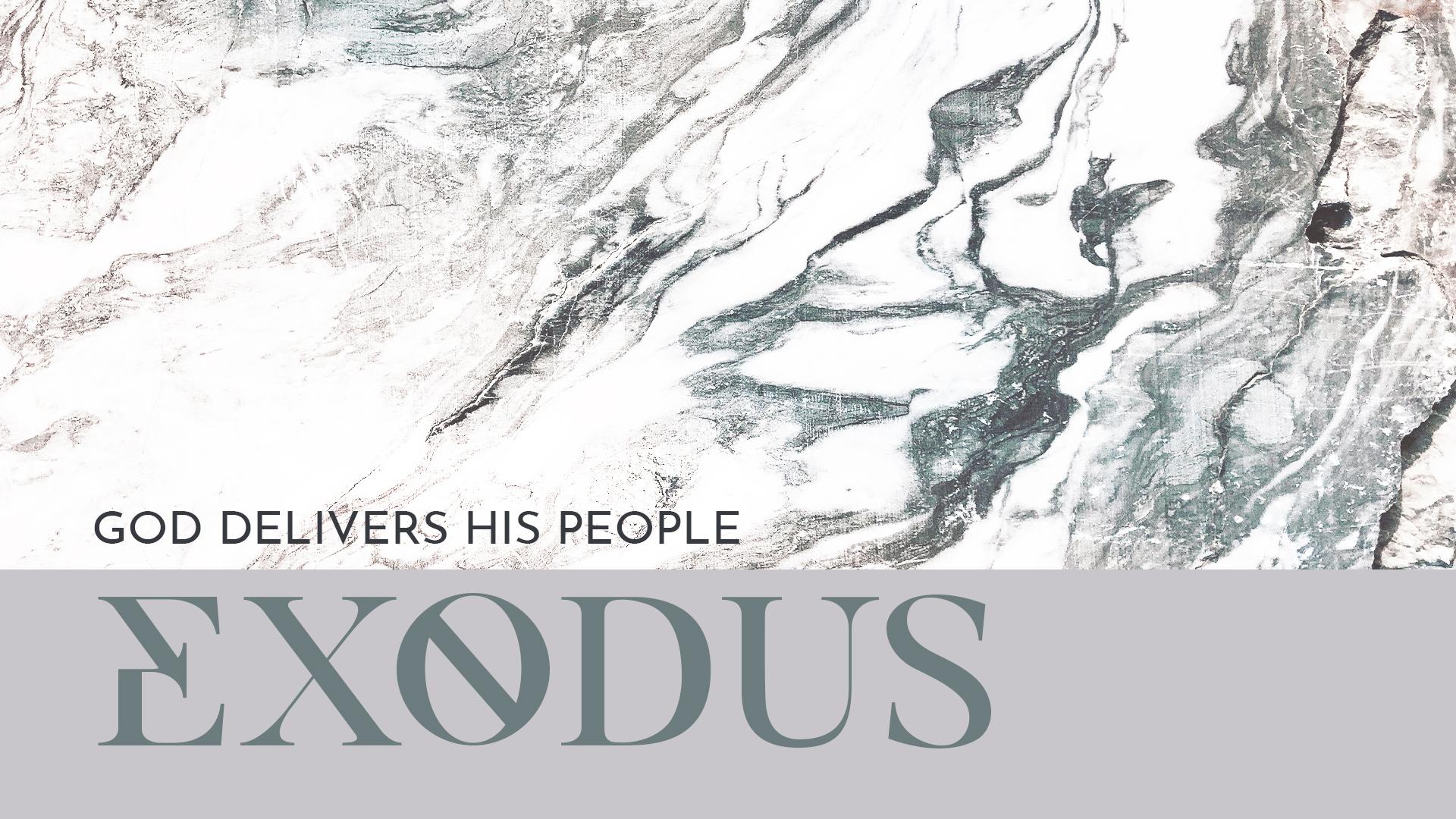 Exodus Graphic - screen.jpg