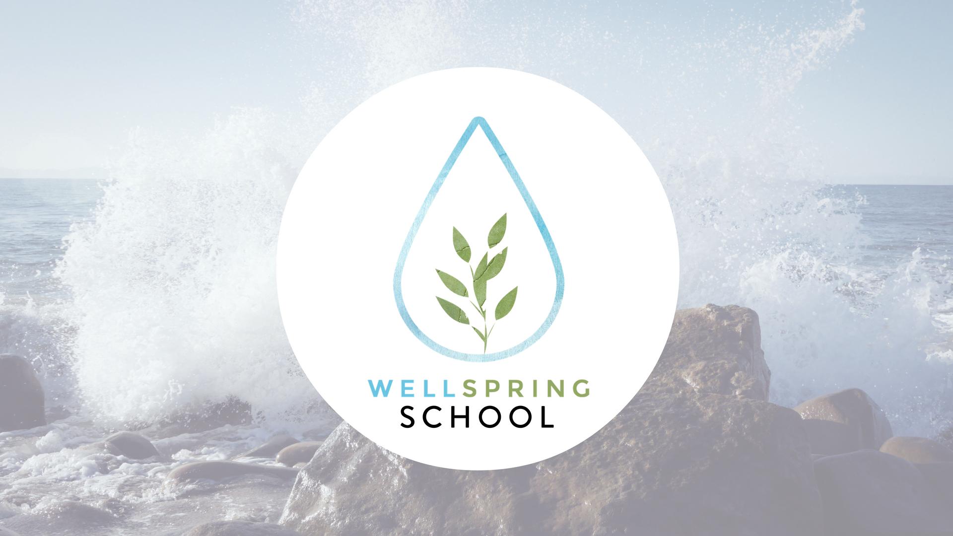 Wellspring Facebook.png