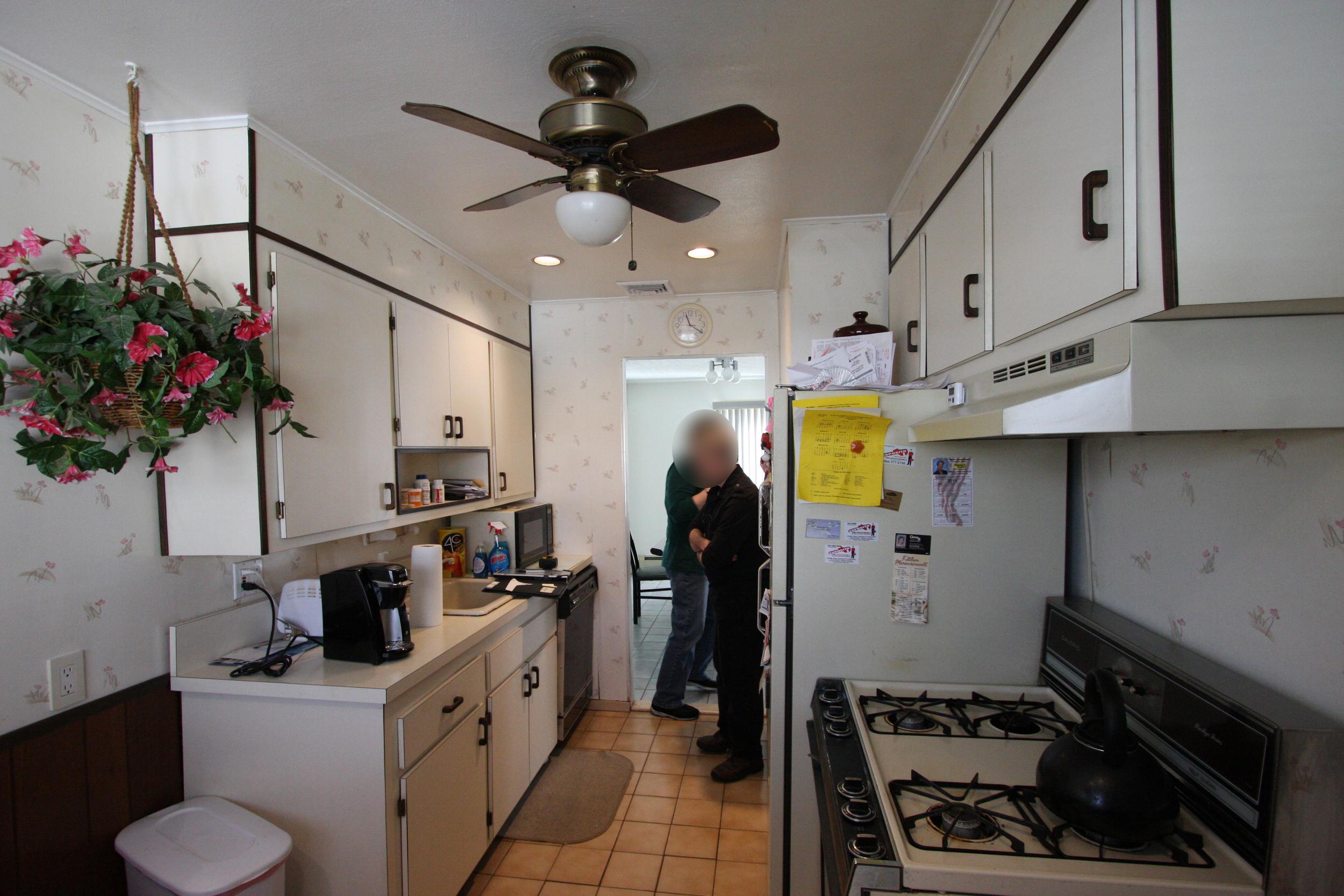 Masterson kitchen 2-17-11 023.jpg