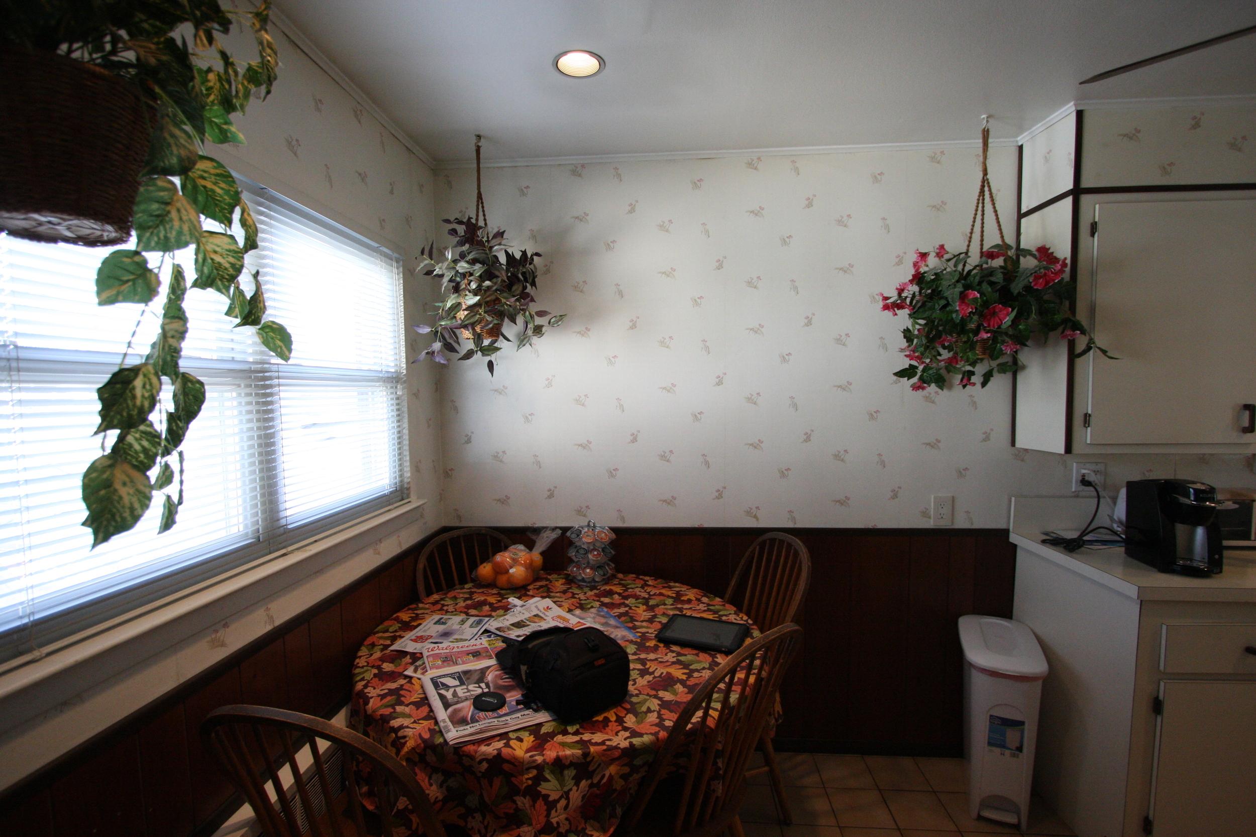 Masterson kitchen 2-17-11 025.jpg