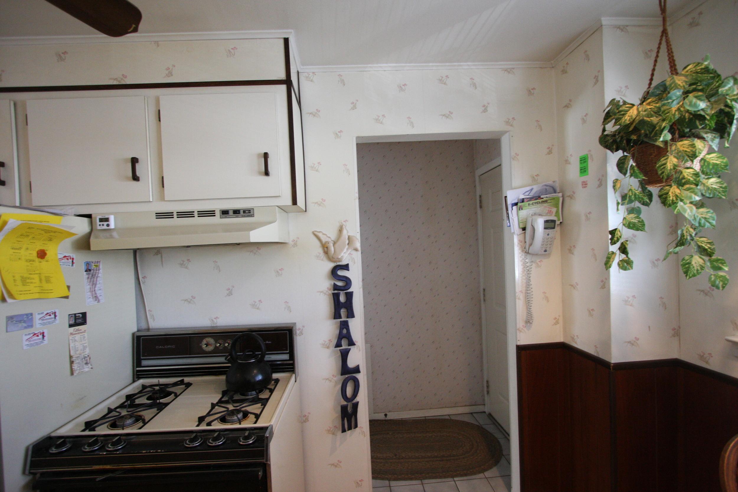 Masterson kitchen 2-17-11 031.jpg