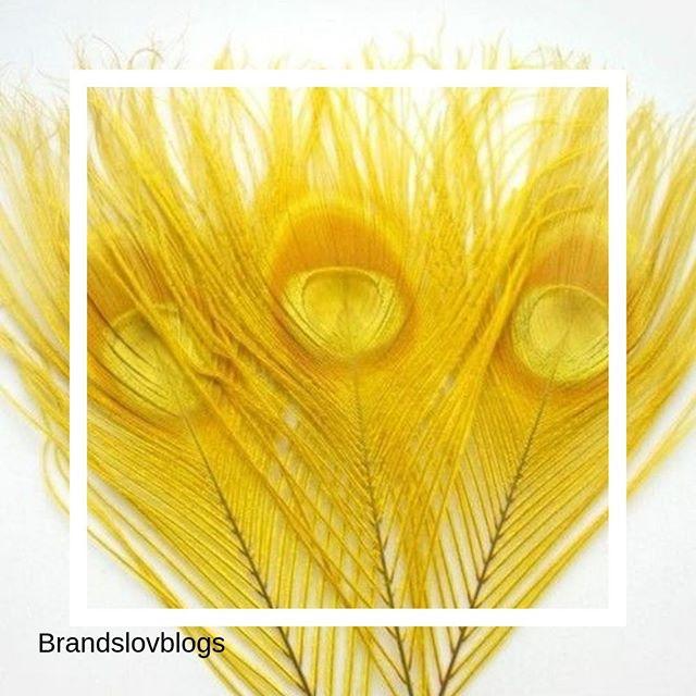 Un peu de vitamine attitude, c'est mettre dans du soleil dans sa vie ! . Créativité et taux d'engagement... % ✅💜Notre agence aime le l'influence couplé au social média . #influence #socialmedia #spending #culture #anything #instainfluence #instalife #cosmetics #beauty #instacosmetics #agency #instalove #instaskin #instatoday #yello #blue #nature #yellow #jaune #vitamine