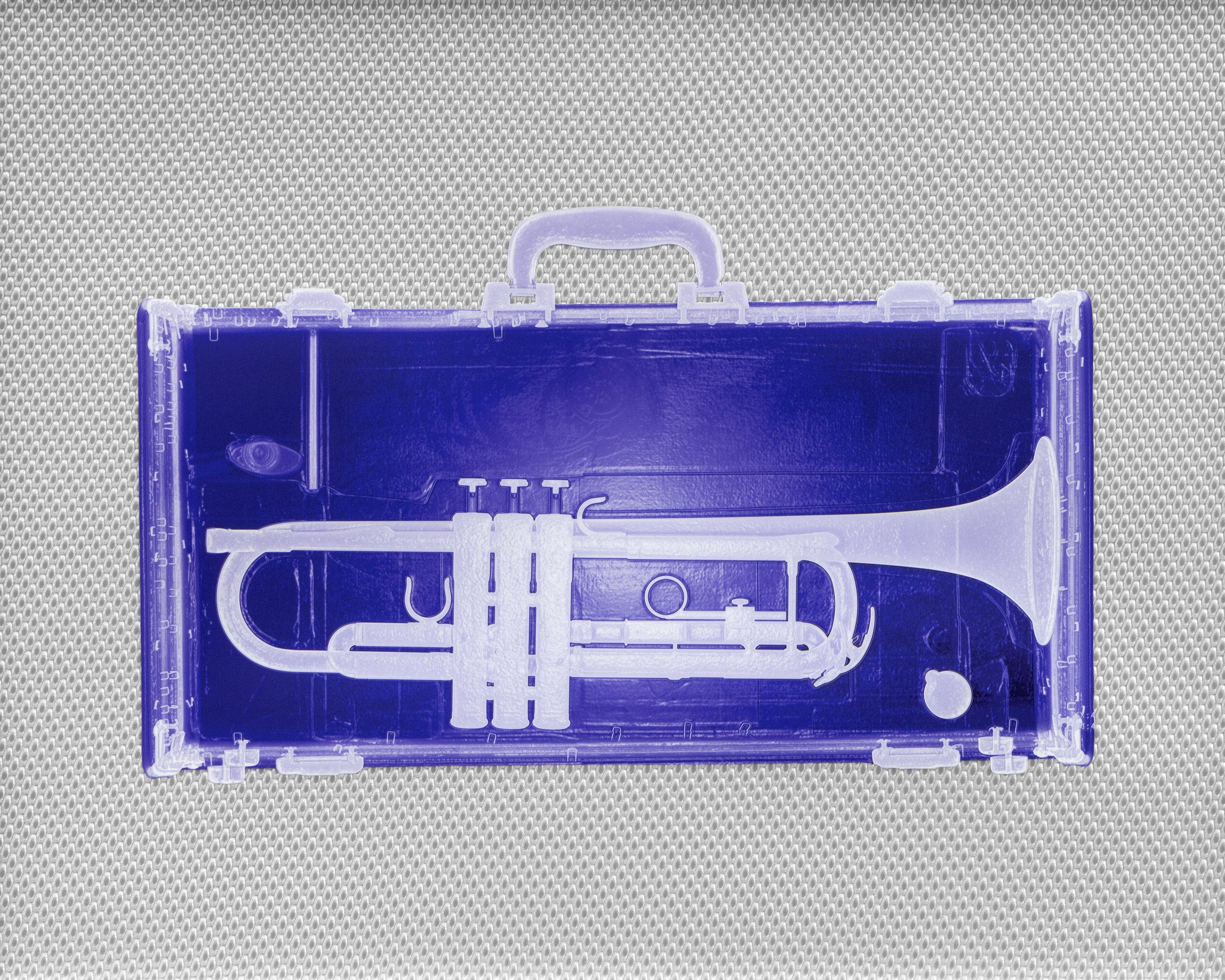 Indigo Trumpet