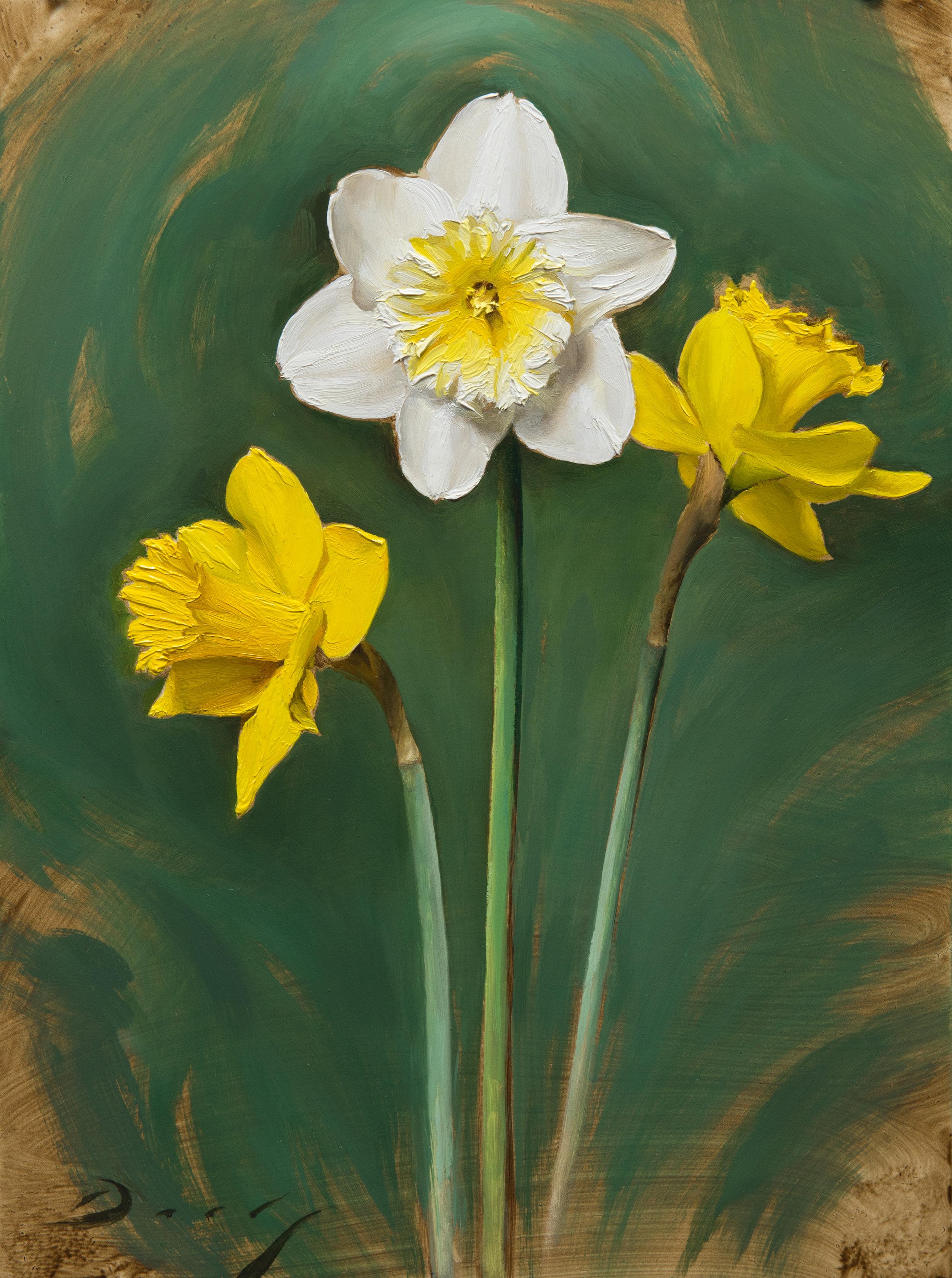 Daffodils - April 2017
