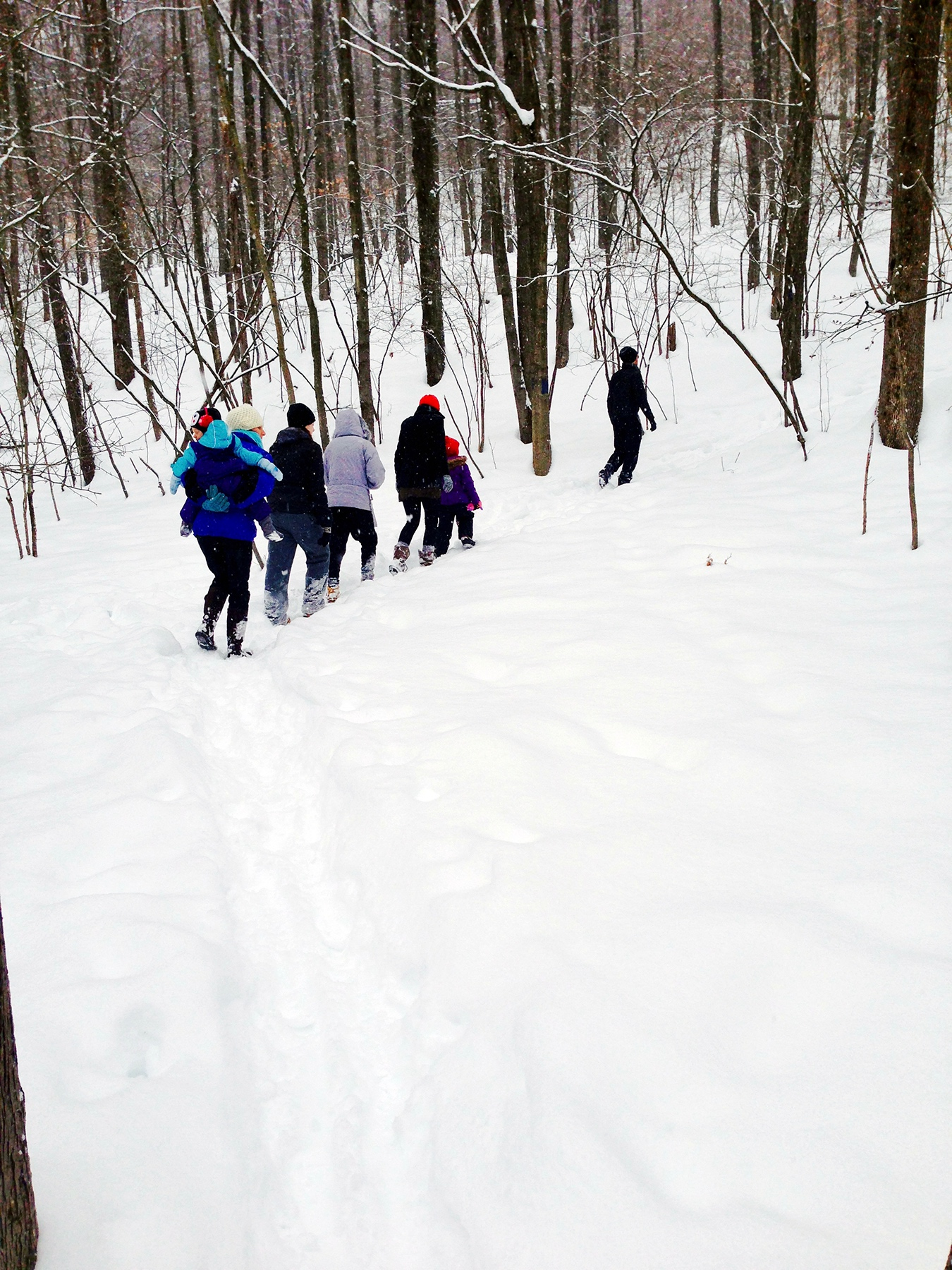 My wife, daughters, granddaughter, brother, sister-in-law & niece walking through the BU Nature Trails.