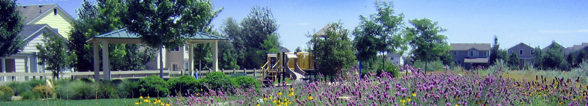 Erie Neighborhood Park